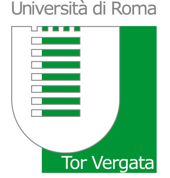 Università di Roma – Tor Vergata